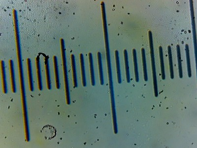 Ottica, meccanica, manutenzione e riparazione del microscopio • Re: Obiettivo a infinito Lomo