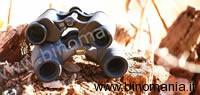 Nikon Premier Se 8x32 vs Swarovski Habicht 8x30 W