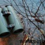 Swarovski Swarovision 10x50 e 12x50