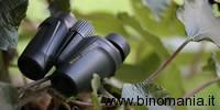 Nikon Travelite 8x25