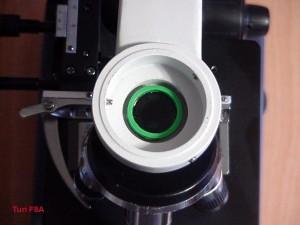 Il filtro analizzatore in sede