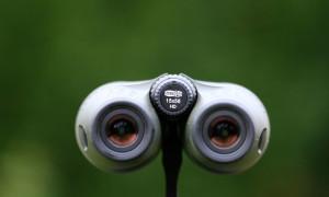 gli oculari del Meostar 15x56 HD