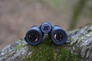 Gli oculari del Kowa Prominar