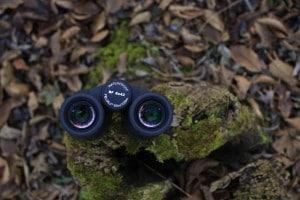 Gli oculari del Minox BF 8x42