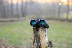 Le lenti da 42 mm del MInox BF si sono rivelate luminose a dispetto del prezzo di acquisto, forse anche grazie ai pochi elementi ottici che compongono questo binocolo.