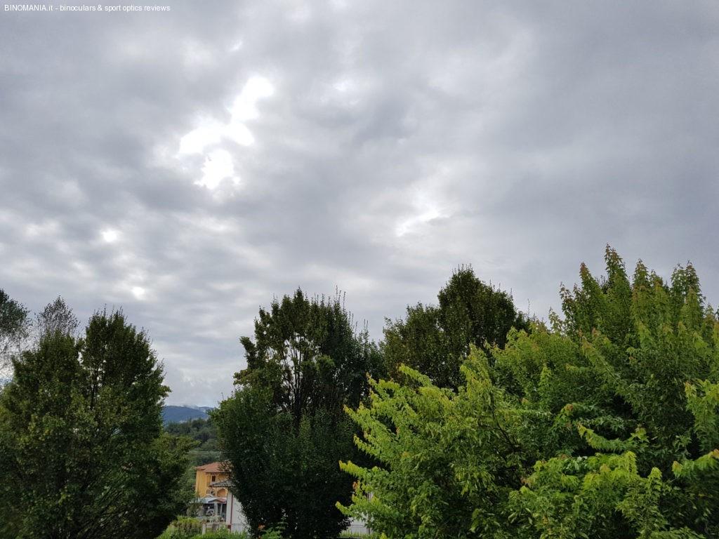 Osservando i rapaci con questo cielo ho appeso al chiodo decine di binocoli costosi.