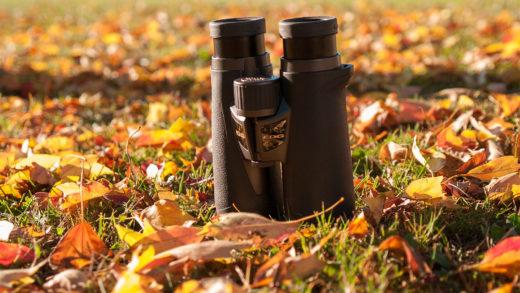 Nikon EDG 7×42: piacevole sorpresa!