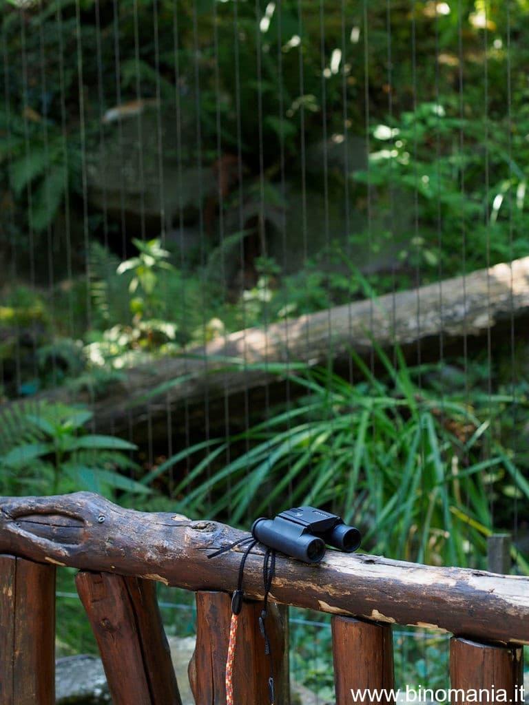 il binocolo Swarovski Pocket 8x25 vicino alla zona della lince, presso lo zoo di Pistoia
