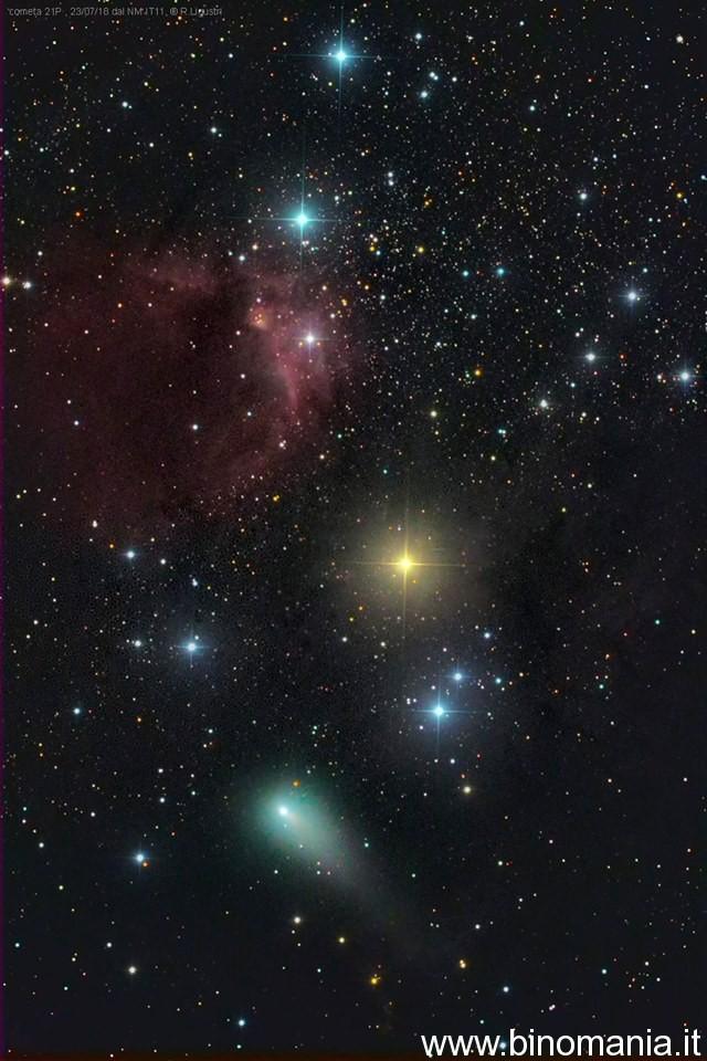 fotografia della cometa Giacobini Zinner di Rolando Ligustri
