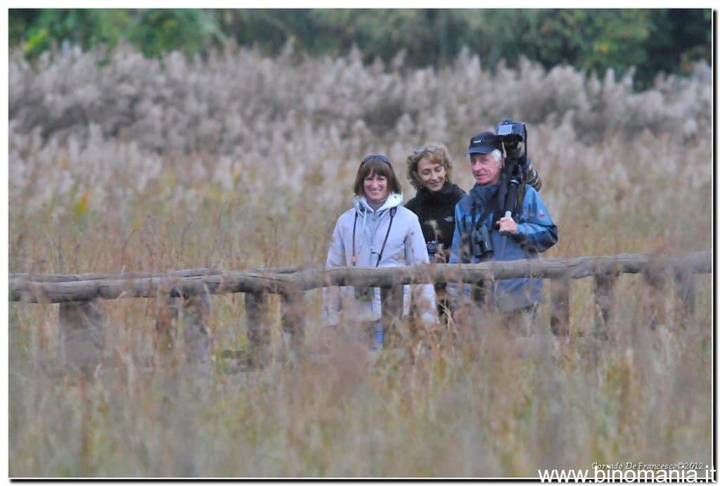 Tre persone camminano in un oasi con binocoli e macchina fotografica