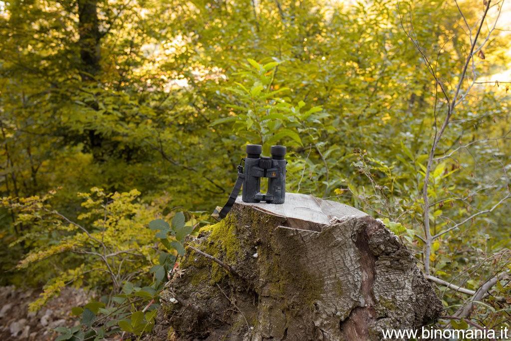 Binocolo Leupold BX-4 PRO GUIDE HD poggiato su un tronco tagliato