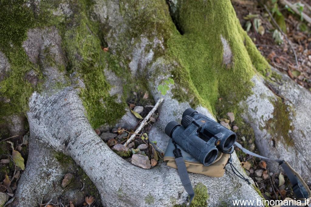 Binocolo Leupold poggiato accanto alle radici di un albero