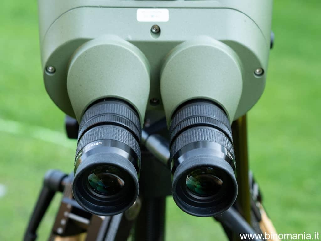 Gli oculari in dotazione forniscono 22 ingrandimenti, generando una pupilla di uscita di 3.1 mm