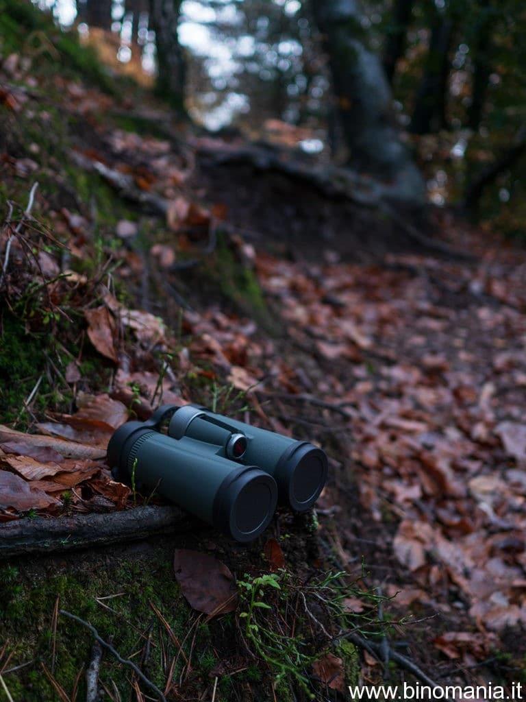 Il Kowa BD II 8x32 XD in mezzo ai boschi