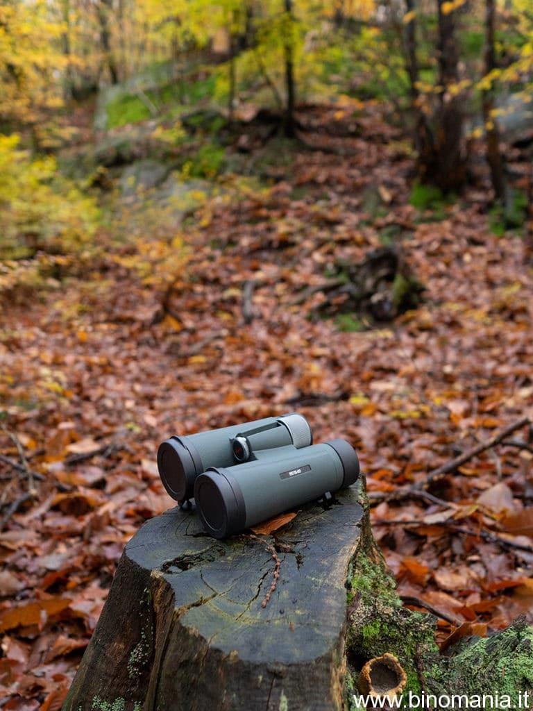 Ho usato spesso i nuovi Kowa BD II XD tra i boschi della mia valle, anche durante giornate uggiose e piovose, apprezzandone la impermeabilizzazione