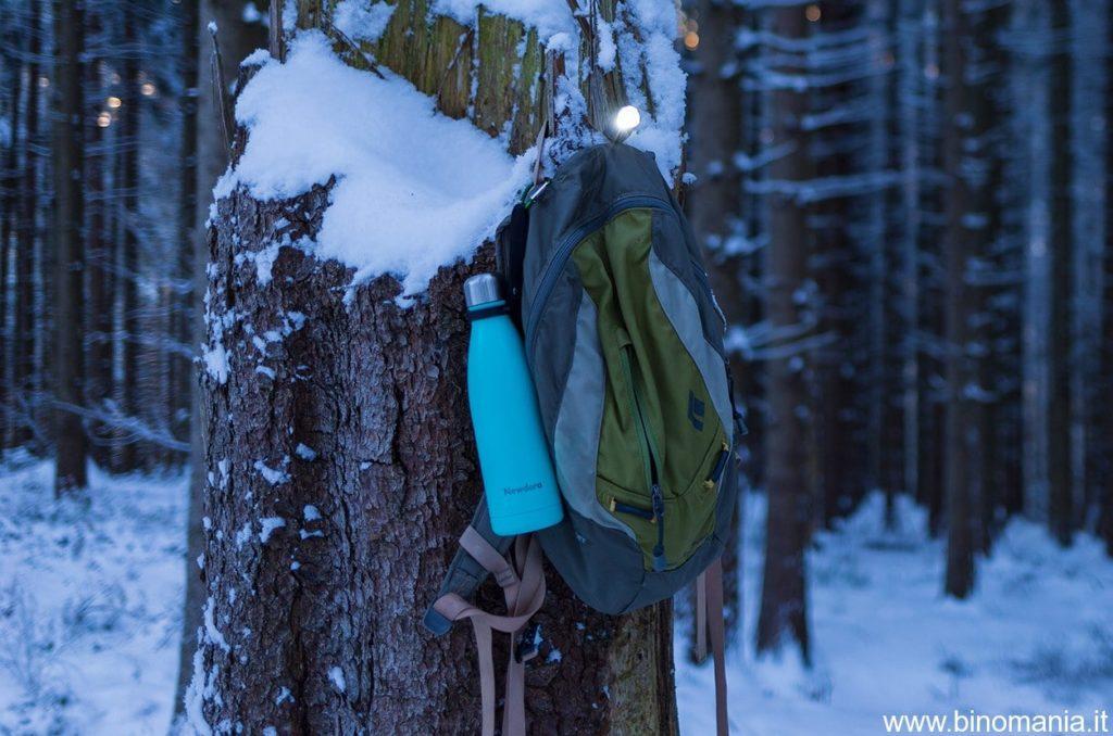 Nel bosco al crepuscolo, molto affascinante...ma non si sa mai